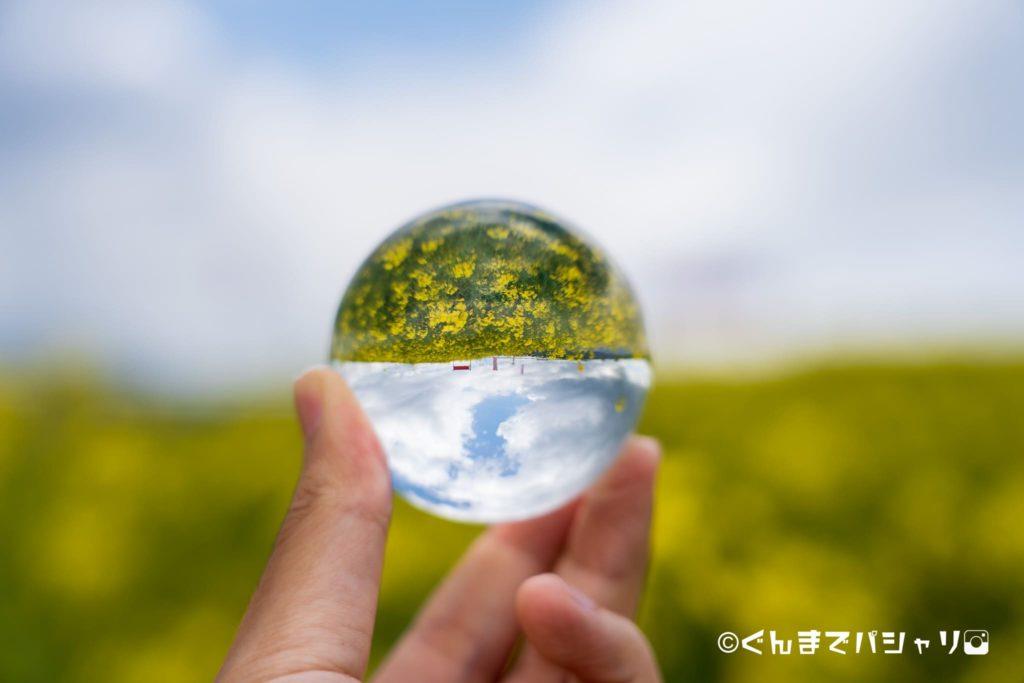水晶玉と花畑