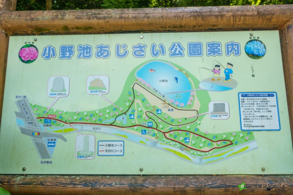 小野池あじさい公園案内図