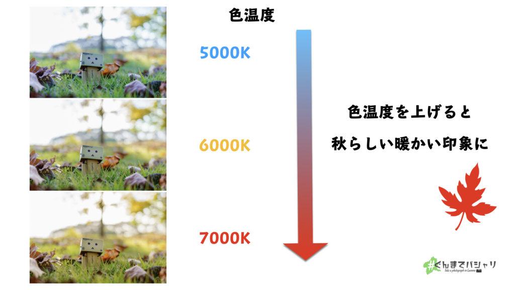 色温度の変化による写真の変化