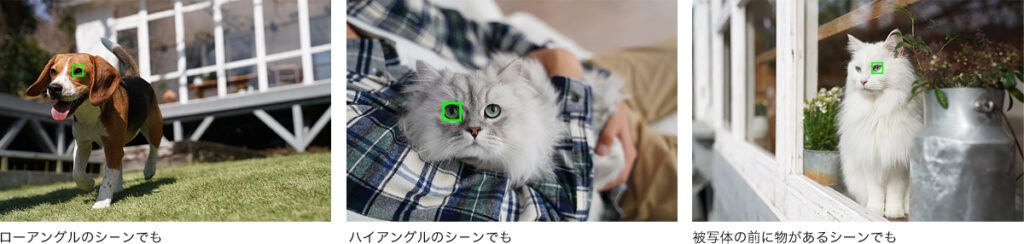 動物瞳AFの説明画像