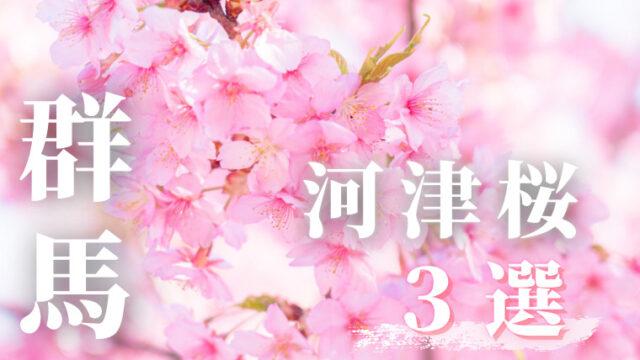 群馬の河津桜3選
