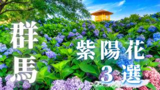 群馬紫陽花3選